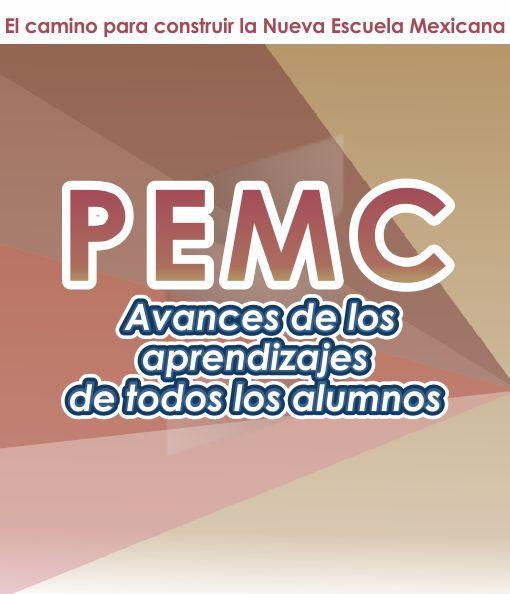 PEMC - Avances de los Aprendizajez de Todos los Alumnos