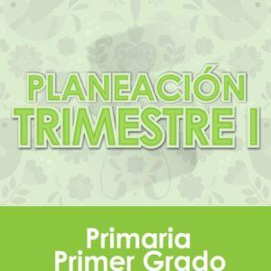 Planeación Primer Trimestre - Primer Grado Primaria 2020 - 2021