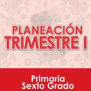 Planeación Primer Trimestre - Sexto Grado Primaria 2020 - 2021