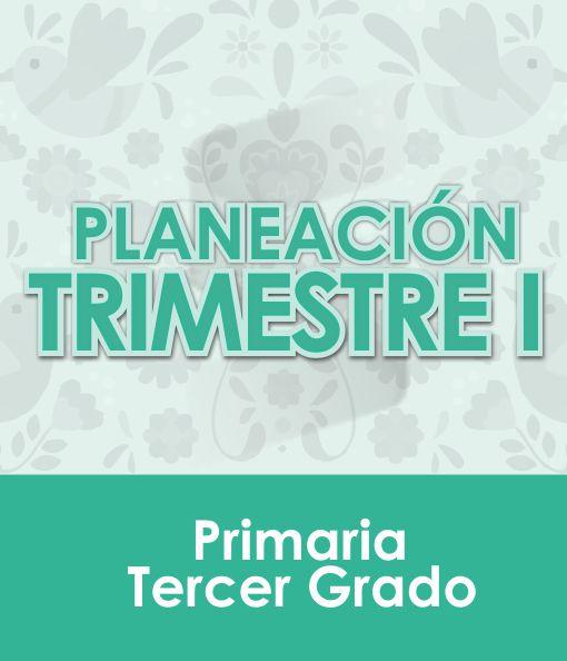 Planeación Primer Trimestre - Tercer Grado Primaria 2020 - 2021