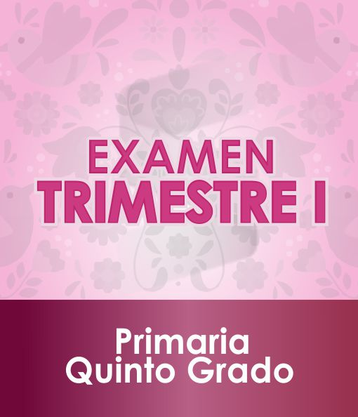 Examen Primer Trimestre - QUINTO Grado de Primaria 2020 - 2021