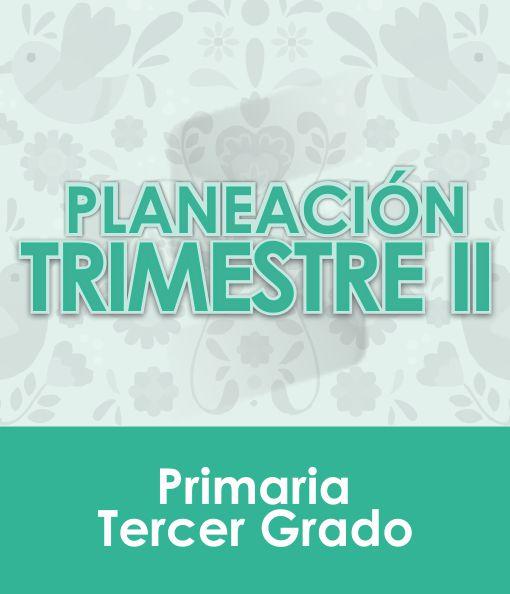 Planeación Segundo Trimestre - TERCER Grado Primaria 2020 - 2021