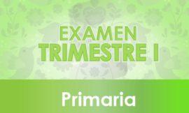 Examen Trimestre I de Primaria - Ciclo Escolar 2021