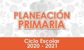 Planeación de Primaria - Ciclo Escolar 2020 - 2021