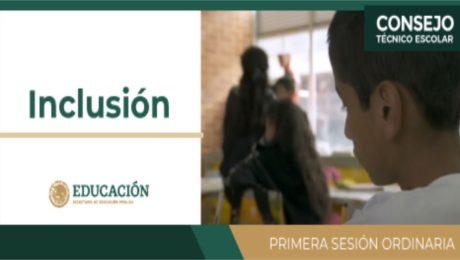 Inclusión educativa y cultura inclusiva - Primera sesión ordinaria ( CTE )
